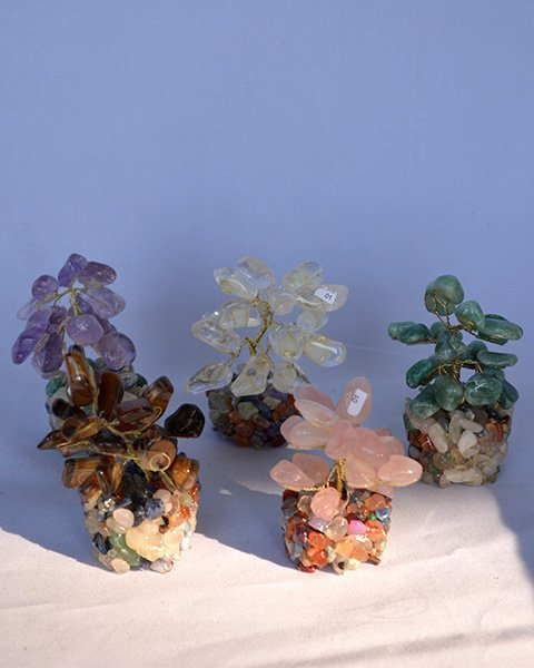 Five multicolored gemstone plants
