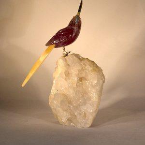 120 – Shyaway Cockatoo
